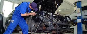 service auto sector 3